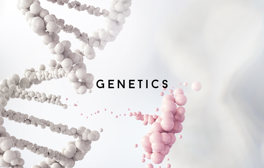 Course Image Genetics