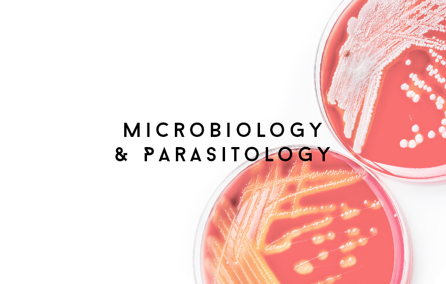 Course Image Microbiology and Parasitology
